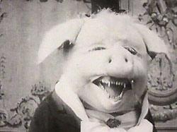'El perfecto cerdo', obra de María Cañas.