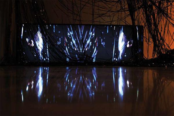 Paco Lara-Barranco. Residuo Orgánico II - 2008. Instalación.