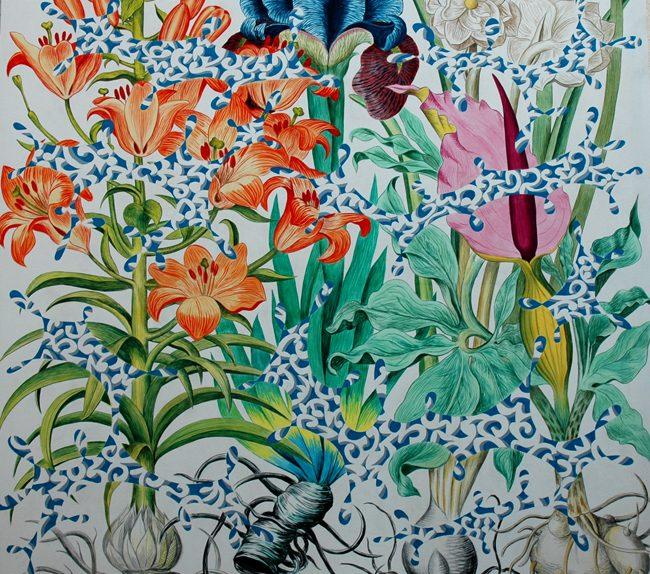 Patricio Cabrera. Acrílico sobre tela, 200 x 200 cm. Serie: Dicen Las Plantas