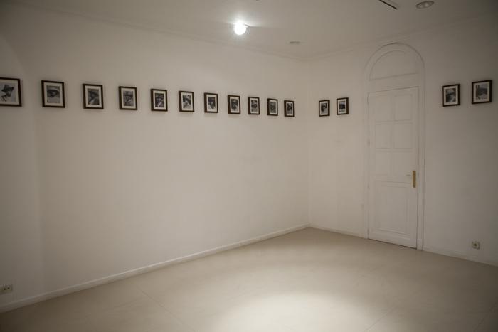 Instalación con 36 imágenes de 40 x 30 cm tomadas de una fotografía de 9 x 14 cm. 2011.