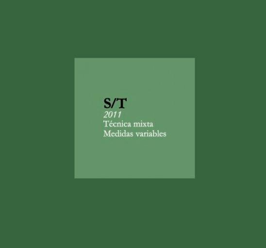 Sin Título, 2011, técnica mixta